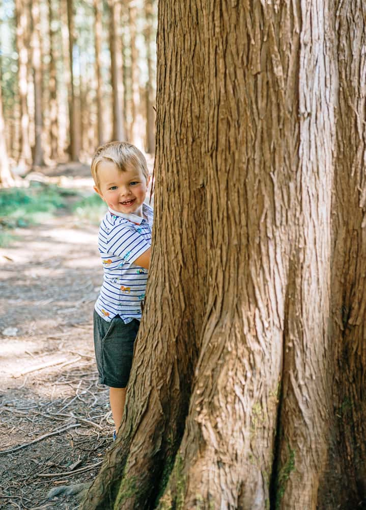 Boy hiding behind tree - Plymouth Family Photography