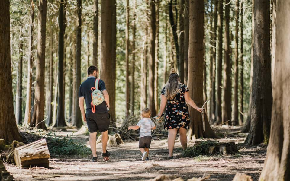 Family walking through the forest - Plymouth Family Photographer - Perfect Story Photography